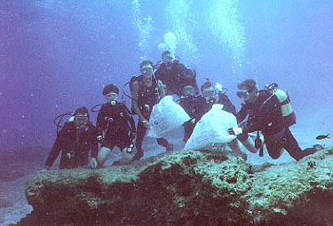 environmental cleanup divers.JPG (26941 bytes)